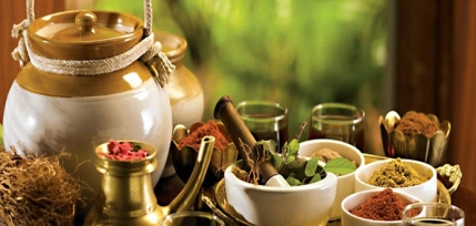 Ayurvedic Treatment Clinic for Sale in Chennai
