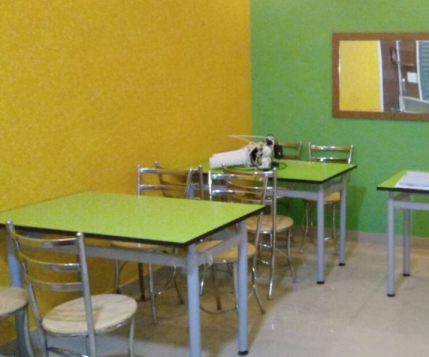 Newly Established Restaurant Looking for Sale/strategic Investment