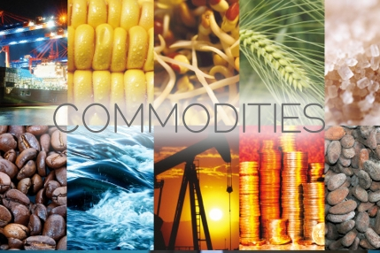 Online Commodity Updates Website for Sale in Delhi