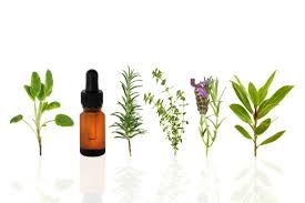 Herbal Oil Heena Mehndi Company For Sale In Mumbai