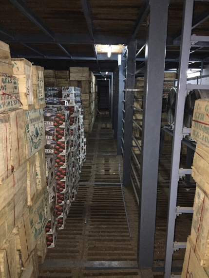 Profitable Cold storage Business for Sale in Ahmedabad