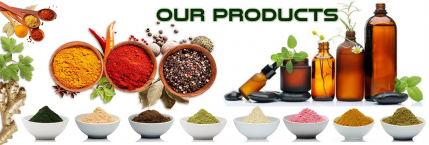 Organic Food Branded Business for Sale in Gujarat