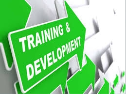Profitable Skill Development business For Sale in India